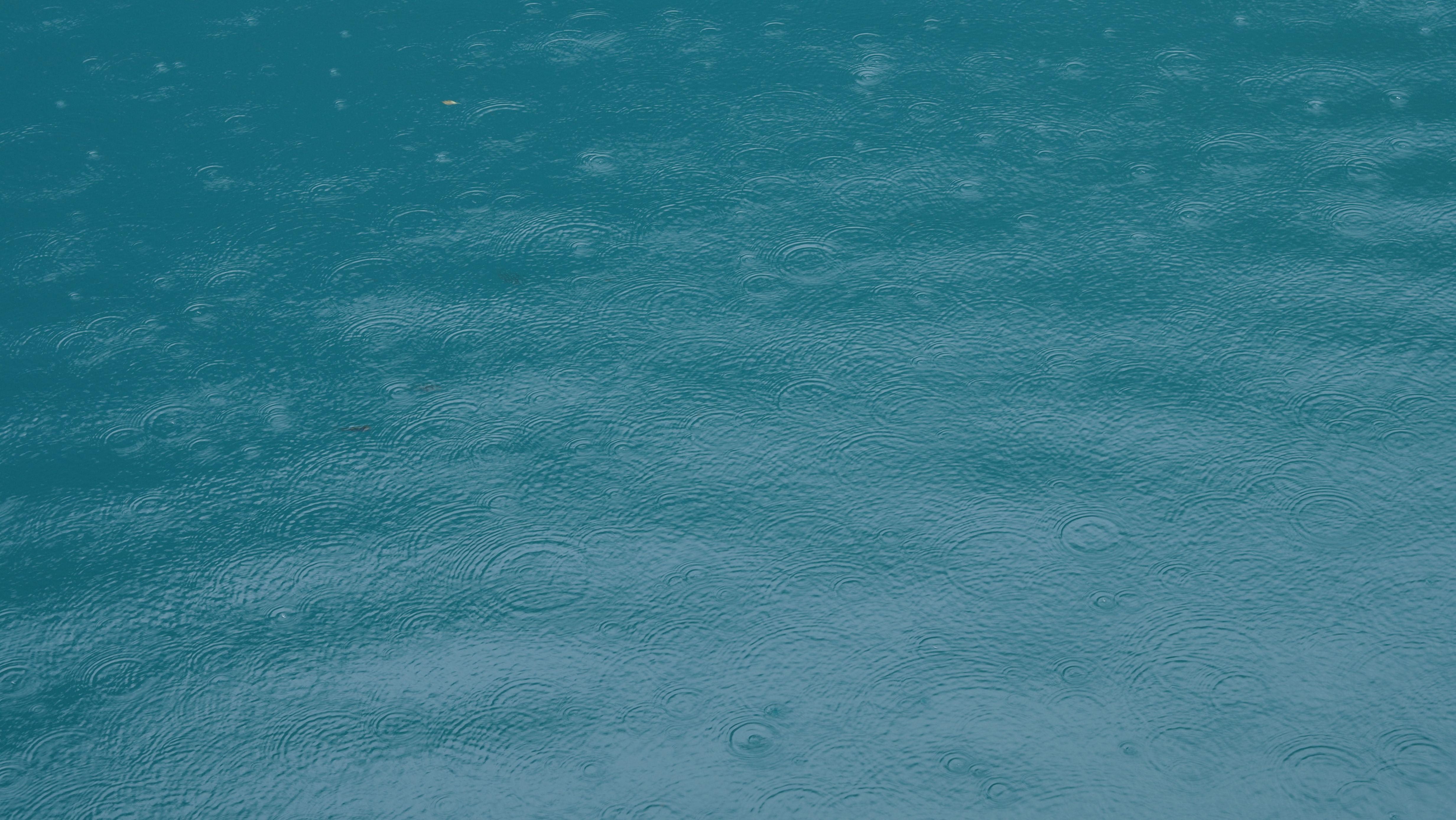 关于雨的文章欣赏:再也无你,再不喜雨