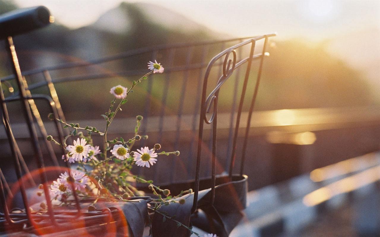 人生不留遗憾的正能量励志语录:相信自己,明天会更好