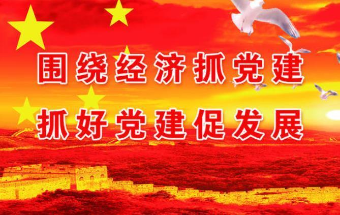 2019党委书记抓基层党建工作述职报告