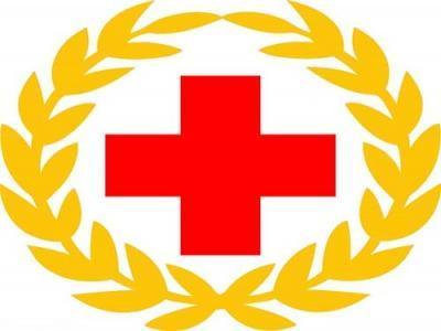 2019大学红十字会工作总结