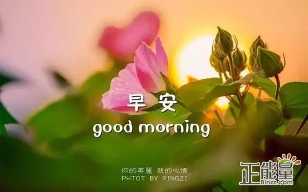 微信早安一句话温馨正能量励志心语大全