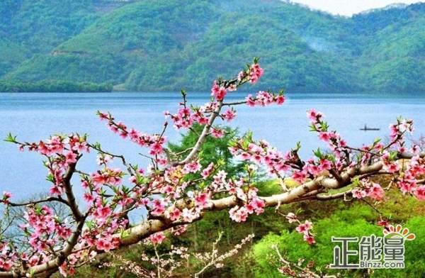 三月春暖花开的说说万物复苏的唯美句子大全