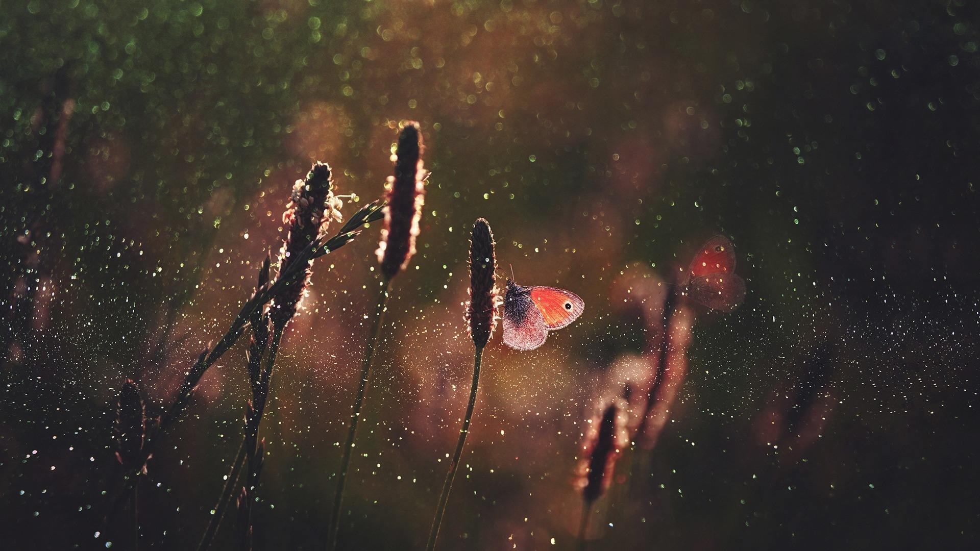想哭就要笑的人生感悟语录:加油,活成自己想要的样子