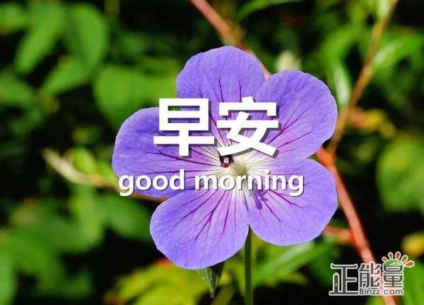 早安正能量简单一句话唯美早安心语大全